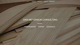 Dan Meyerson Consulting